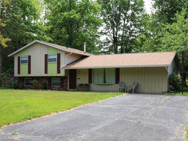 6806 Shelly Dr, Madison, OH 44057 (MLS #4006122) :: Tammy Grogan and Associates at Cutler Real Estate