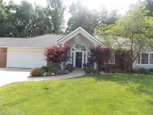 440 Georgiana Way, Wadsworth, OH 44281 (MLS #4006318) :: Tammy Grogan and Associates at Cutler Real Estate