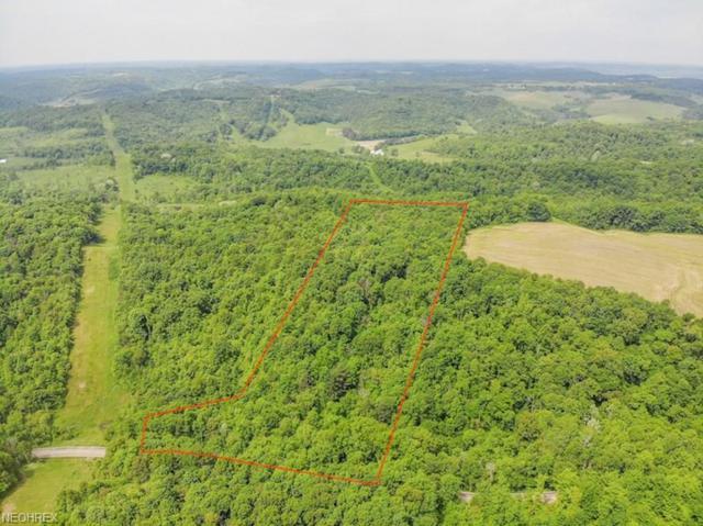 Blizzard Ridge Rd, Uhrichsville, OH 44683 (MLS #4006574) :: Tammy Grogan and Associates at Cutler Real Estate