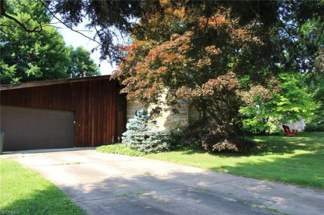 111 East 9th Street, Williamstown, WV 26187 (MLS #4006796) :: Tammy Grogan and Associates at Cutler Real Estate