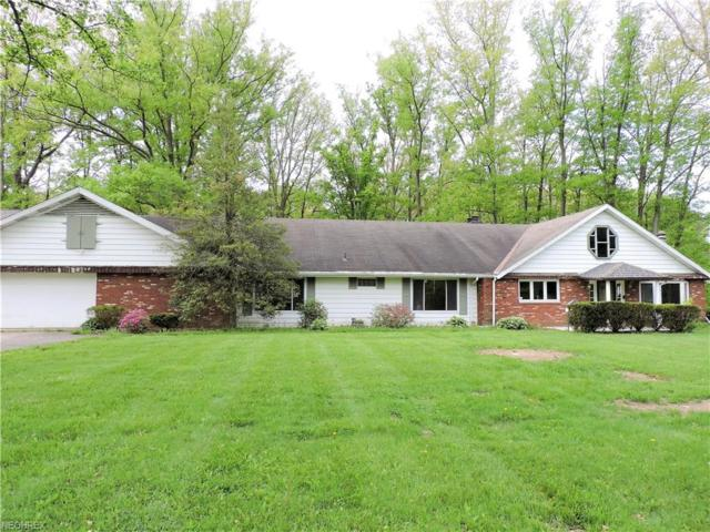 11448 Robson Rd, Grafton, OH 44044 (MLS #4006810) :: Tammy Grogan and Associates at Cutler Real Estate