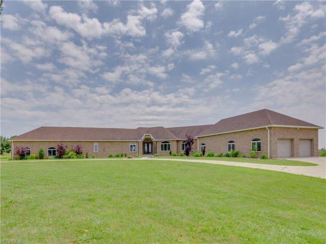 4500 Paradise Rd, Seville, OH 44273 (MLS #4006943) :: Tammy Grogan and Associates at Cutler Real Estate