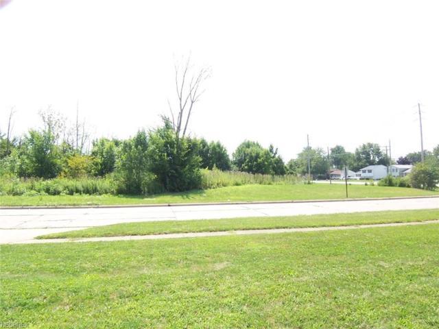 S/L Leavitt Rd/Temple Ave, Lorain, OH 44053 (MLS #4006995) :: The Crockett Team, Howard Hanna