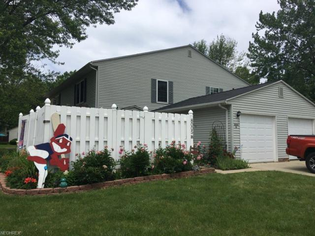 8005 Independence Dr B, Mentor, OH 44060 (MLS #4007287) :: RE/MAX Trends Realty