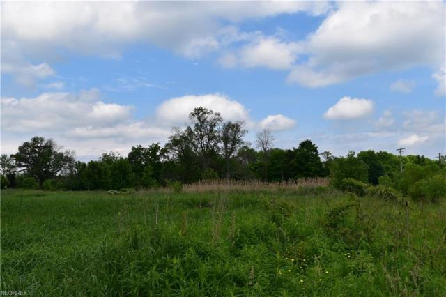 9570 Clay St, Montville, OH 44064 (MLS #4007310) :: Tammy Grogan and Associates at Cutler Real Estate
