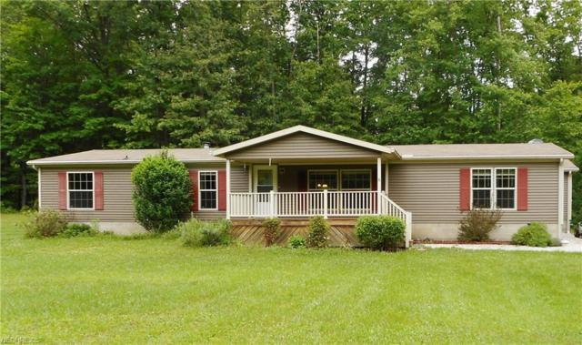5345 Newton Falls Rd, Ravenna, OH 44266 (MLS #4007422) :: Tammy Grogan and Associates at Cutler Real Estate