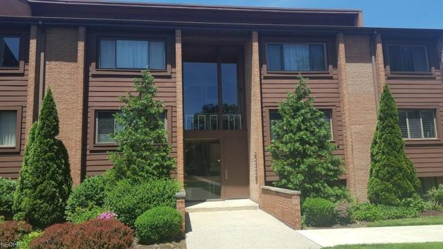 951 Canyon View Rd #203, Northfield, OH 44067 (MLS #4007441) :: RE/MAX Trends Realty