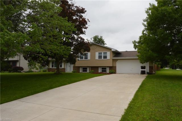 3400 Johnson Farm Dr, Canfield, OH 44406 (MLS #4007511) :: Tammy Grogan and Associates at Cutler Real Estate