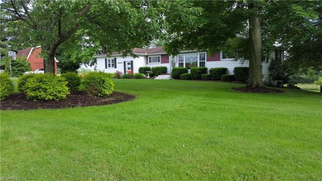 22597 Center Rd, Homeworth, OH 44634 (MLS #4007687) :: Tammy Grogan and Associates at Cutler Real Estate
