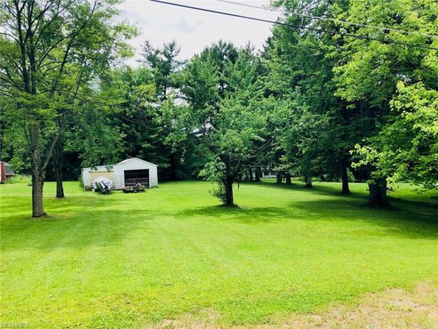 Finland Rd, Austintown, OH 44515 (MLS #4007702) :: RE/MAX Valley Real Estate