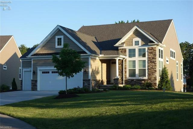4698 Tradewinds Dr, Port Clinton, OH 43452 (MLS #4007812) :: RE/MAX Trends Realty