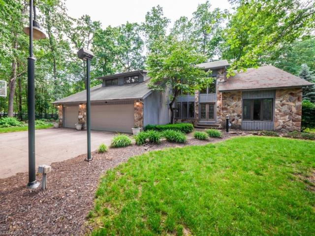 6880 Cliffside Dr, Vermilion, OH 44089 (MLS #4007938) :: The Crockett Team, Howard Hanna