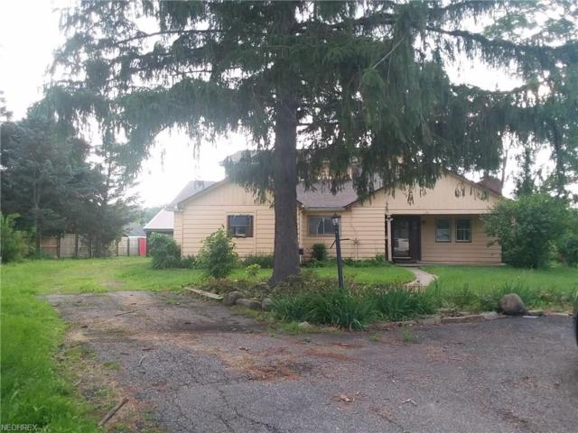 4553 State Route 225, Diamond, OH 44412 (MLS #4008127) :: Tammy Grogan and Associates at Cutler Real Estate