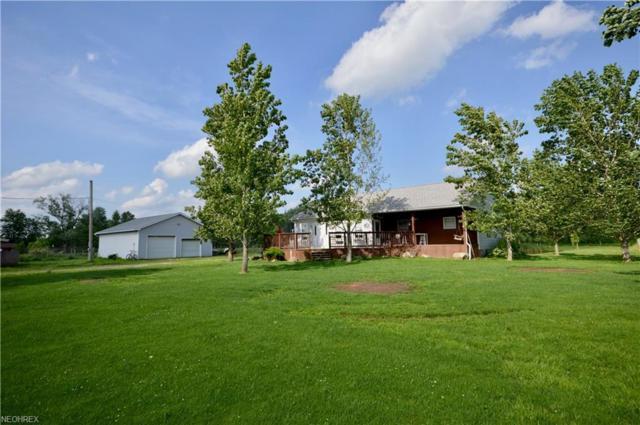 558 Clay Rd, Jefferson, OH 44047 (MLS #4008664) :: PERNUS & DRENIK Team