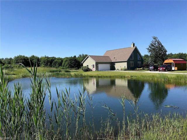 5800 Weaver Rd, Conneaut, OH 44030 (MLS #4008729) :: Tammy Grogan and Associates at Cutler Real Estate