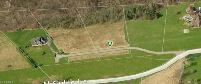 Lot 3 N Gulch Ln, Warren, OH 44484 (MLS #4009044) :: The Crockett Team, Howard Hanna