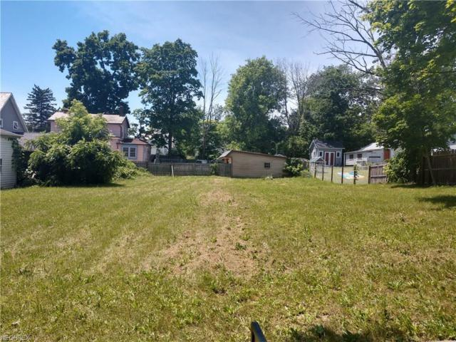 247 S Elmwood Ave, Medina, OH 44256 (MLS #4009152) :: Tammy Grogan and Associates at Cutler Real Estate