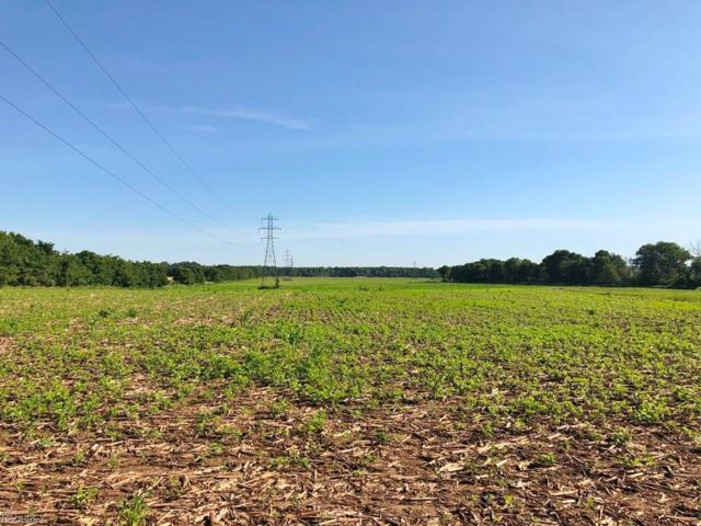 0 Old Delaware Rd, Mount Vernon, OH 43050 (MLS #4009167) :: Tammy Grogan and Associates at Cutler Real Estate