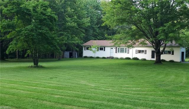 5661 Chapin Rd, Madison, OH 44057 (MLS #4009232) :: Tammy Grogan and Associates at Cutler Real Estate
