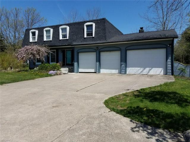8001 Boneta Rd, Wadsworth, OH 44281 (MLS #4009299) :: The Crockett Team, Howard Hanna