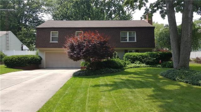 263 Wheelock Dr NE, Warren, OH 44484 (MLS #4009466) :: RE/MAX Valley Real Estate