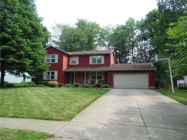 441 Red Rock Dr, Wadsworth, OH 44281 (MLS #4009516) :: RE/MAX Edge Realty