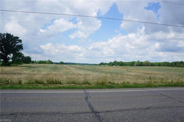 Lot 54 Waterloo Rd, Atwater, OH 44201 (MLS #4009571) :: Keller Williams Chervenic Realty