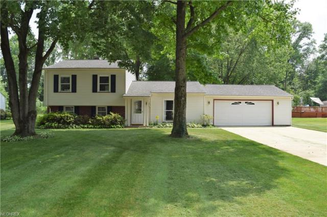 3846 Bruce Dr SE, Warren, OH 44484 (MLS #4009648) :: RE/MAX Trends Realty