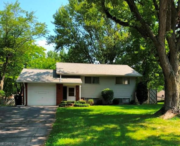 8333 Venice Heights Dr NE, Howland, OH 44484 (MLS #4009834) :: RE/MAX Trends Realty