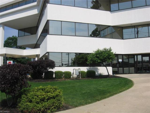 30400 Detroit Rd #101, Westlake, OH 44145 (MLS #4009934) :: Tammy Grogan and Associates at Cutler Real Estate
