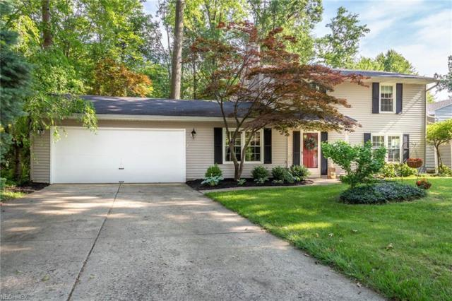 4484 Mapleview Dr, Vermilion, OH 44089 (MLS #4009947) :: RE/MAX Trends Realty
