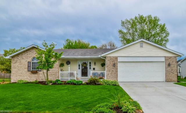 405 Sheffield Ave NE, Massillon, OH 44646 (MLS #4010299) :: RE/MAX Trends Realty