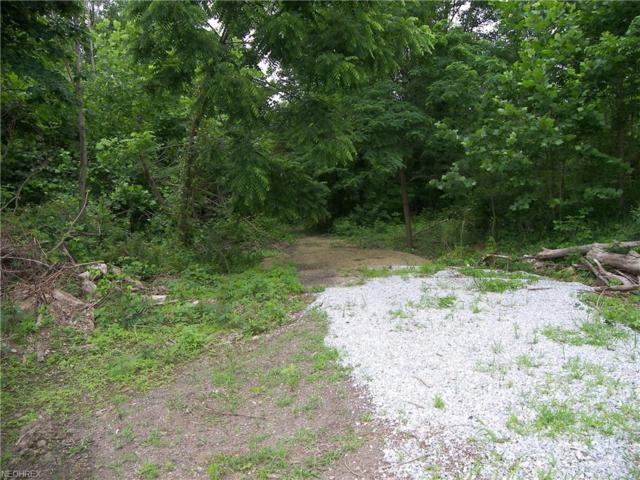 Quarry Rd, Amherst, OH 44001 (MLS #4010997) :: The Crockett Team, Howard Hanna