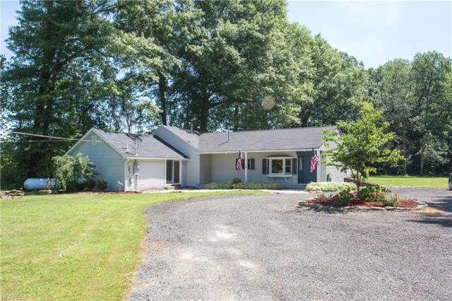 2135 S Duck Creek Rd, North Jackson, OH 44451 (MLS #4011579) :: The Crockett Team, Howard Hanna