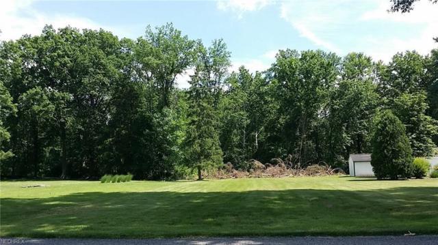 V/L Usher Rd, Olmsted Township, OH 44138 (MLS #4011733) :: Keller Williams Chervenic Realty