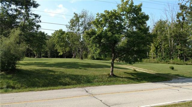 4460 Hawkins Rd, Richfield, OH 44286 (MLS #4011752) :: The Crockett Team, Howard Hanna