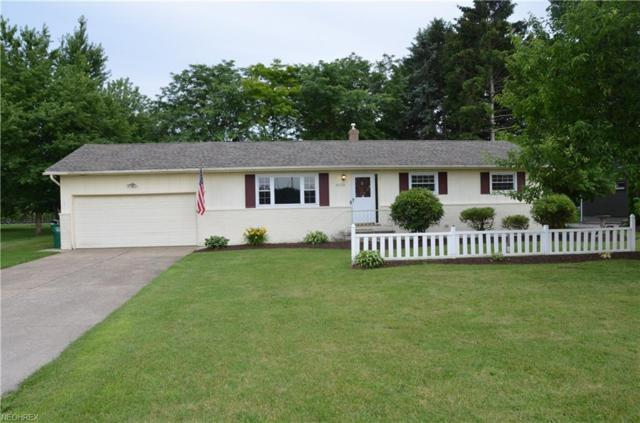 6110 Middle Ridge Rd, Madison, OH 44057 (MLS #4011794) :: The Crockett Team, Howard Hanna