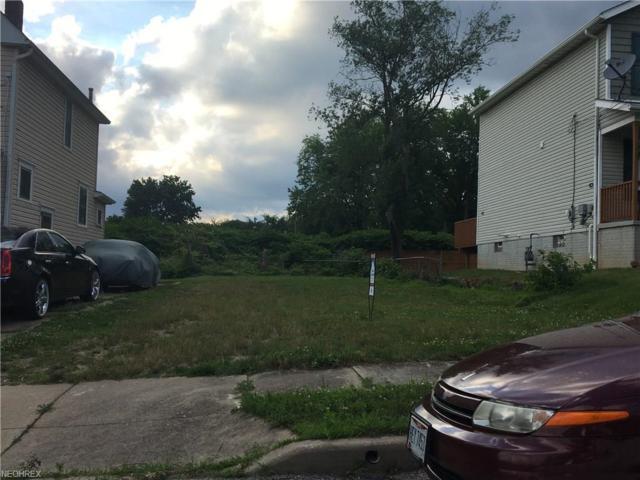 394 Kline Ave, Akron, OH 44305 (MLS #4011874) :: PERNUS & DRENIK Team