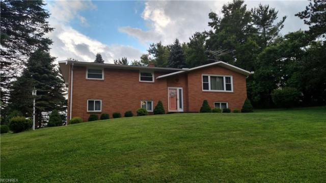 72861 Brownfield Rd, Dillonvale, OH 43917 (MLS #4013192) :: Keller Williams Chervenic Realty