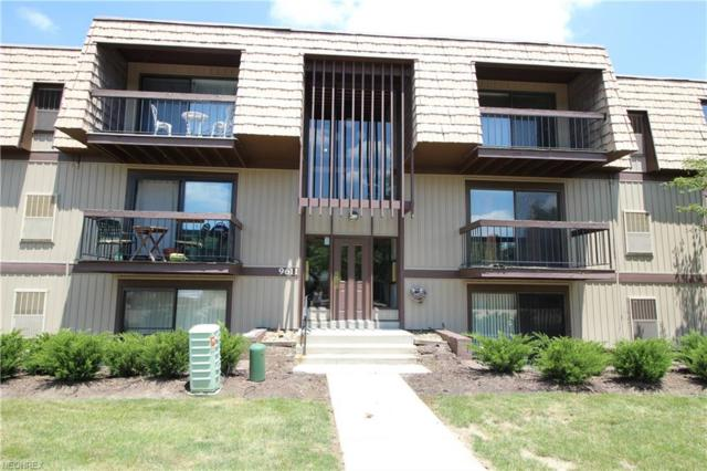 9611 Sunrise Blvd K12, North Royalton, OH 44133 (MLS #4013606) :: The Crockett Team, Howard Hanna