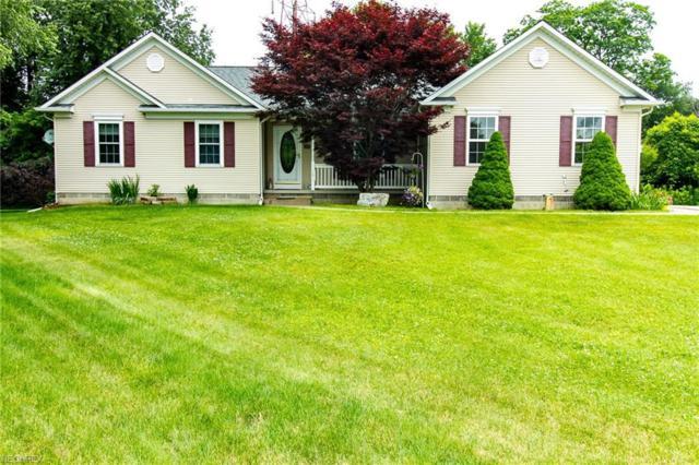 169 Sandstone Dr, Painesville Township, OH 44077 (MLS #4013766) :: The Crockett Team, Howard Hanna
