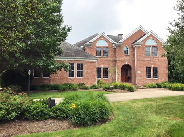 10618 Castle Pines Cir, Concord, OH 44077 (MLS #4013832) :: The Crockett Team, Howard Hanna