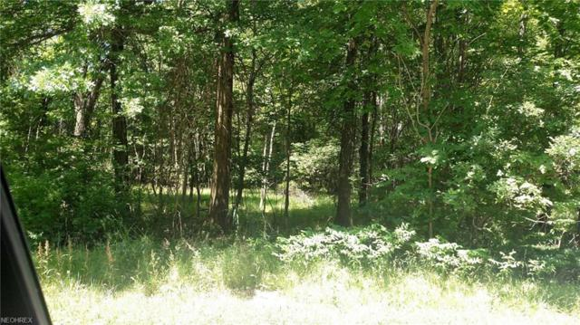 White Rd, Willoughby Hills, OH 44092 (MLS #4014416) :: The Crockett Team, Howard Hanna