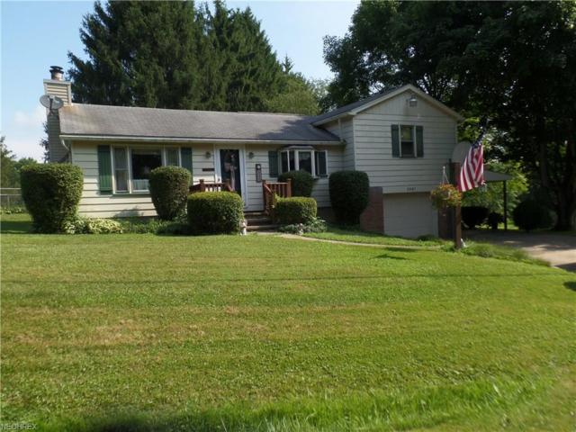 3947 Padgett Rd, East Palestine, OH 44413 (MLS #4015497) :: The Crockett Team, Howard Hanna
