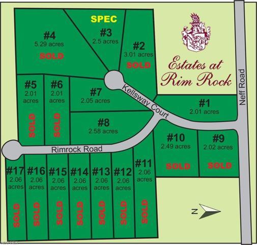 2513-S/L 7 Kellsway Ct, Medina, OH 44256 (MLS #4015691) :: The Crockett Team, Howard Hanna