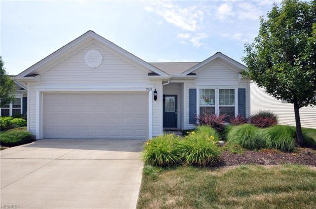 9135 Vernon Hl, North Ridgeville, OH 44039 (MLS #4016051) :: The Crockett Team, Howard Hanna