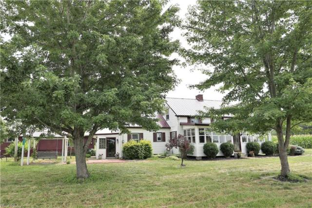 44519 Hallauer Rd, Oberlin, OH 44074 (MLS #4016087) :: RE/MAX Edge Realty