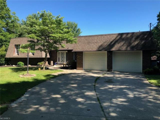 6077 Ford Rd, Madison, OH 44057 (MLS #4016121) :: The Crockett Team, Howard Hanna