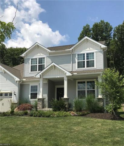 5000 Lake View Dr, Peninsula, OH 44264 (MLS #4016424) :: Tammy Grogan and Associates at Cutler Real Estate