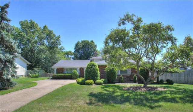 6251 Saint Francis Dr, Seven Hills, OH 44131 (MLS #4016724) :: RE/MAX Edge Realty